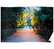 sentiero illuminato Poster