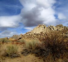 Rocks In The Buttermilks by marilyn diaz