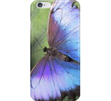 Purple Blue Butterly iPhone Case/Skin