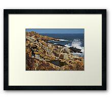 Coastal Reflection Framed Print