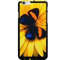 Butterfly on a Yellow Flower iPhone Case/Skin