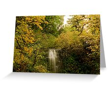 Autumn At Upper Terrace Greeting Card