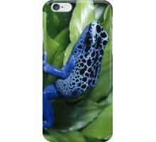 Cool Blue Frog iPhone Case/Skin