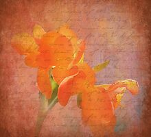 Peach Dream by Trudy Wilkerson