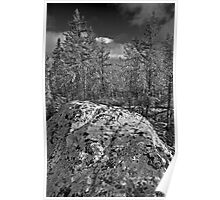 Granite and Pines - Yellowknife, NWT, Canada Poster
