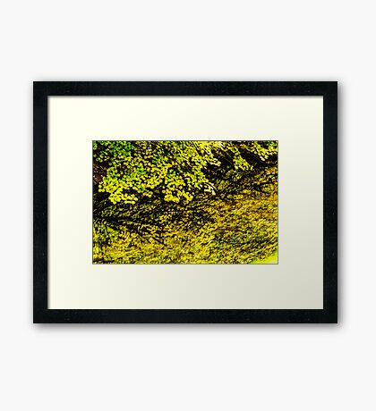 Autumn Reflections in Silver Creek  Framed Print