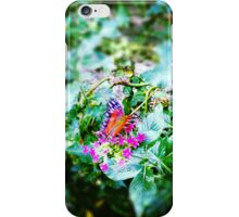 Hello Butterfly iPhone Case/Skin