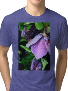 Chilled Purple Perfection Tri-blend T-Shirt