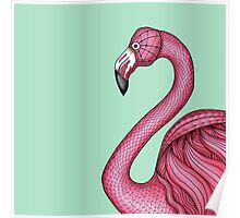 Pink Flamingo on Turquoise Background Poster
