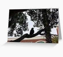 Crow 31 10 12 Look At You Two Greeting Card