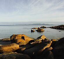 Morning at Emita Flinders Island by Andrew  Makowiecki