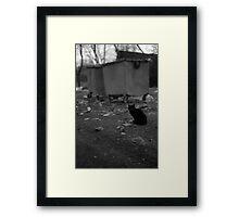 Black Cat & Aesthetics Of The USSR Framed Print