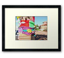 56/365 In Narrogin Framed Print