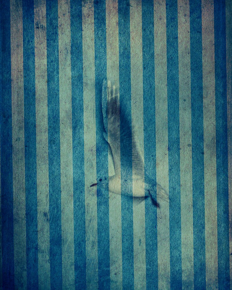 seagull in cyan by frederic levy-hadida