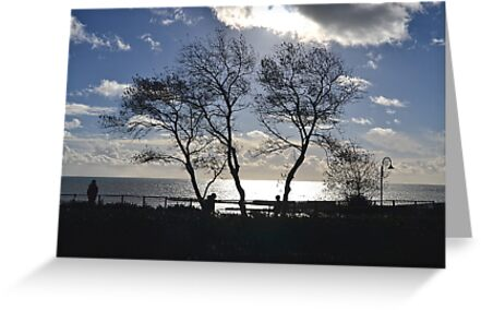 Buy e greeting cards uk - View Through The Trees At Lyme, Dorset UK  Greeting Cards & Postcards
