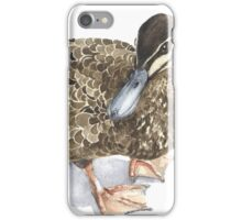 Pacific Black Duck iPhone Case/Skin