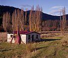 Derelict House, Hops Field, Tasmania by BRogers