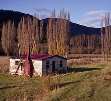 Derelict House, Hops Field, Tasmania by Brett Rogers