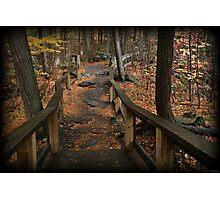 Childs Autumn Hike Photographic Print