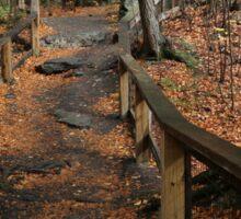 Childs Autumn Hike Sticker