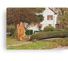 Sandy-the day after Canvas Print