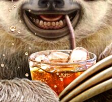 SLOTH & SOFT DRINK Sticker