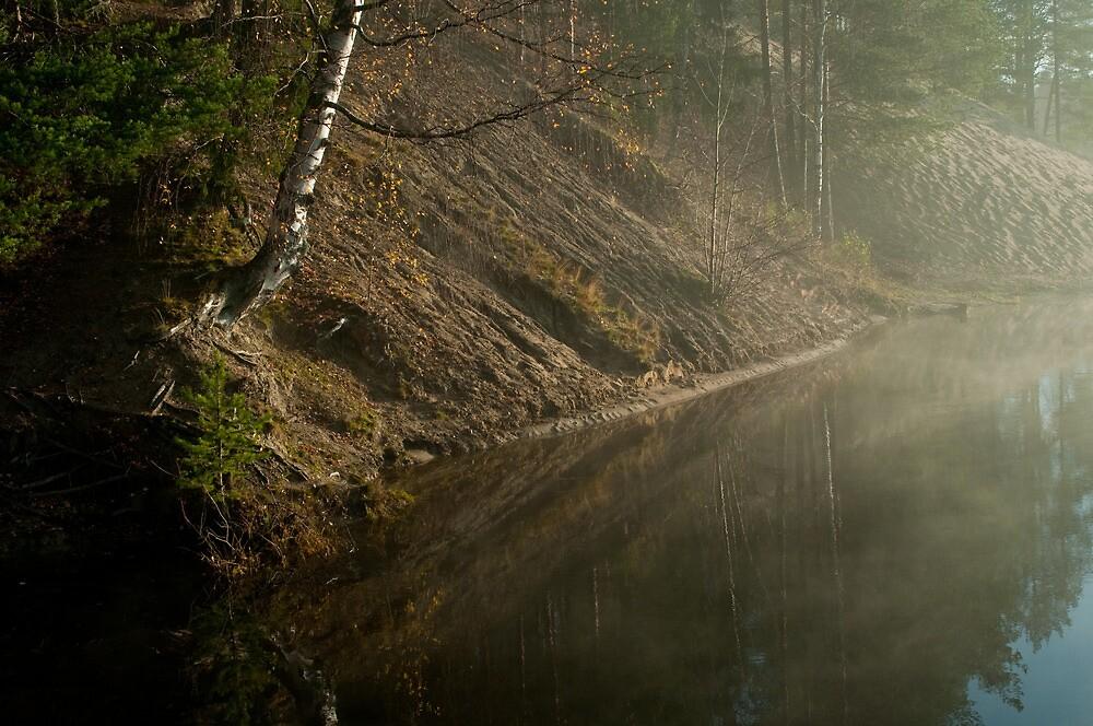 Sandkammen by Bjarte Edvardsen