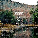 Seek & Find  by Vintageskies