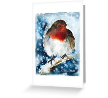 Snow Robin Greeting Card