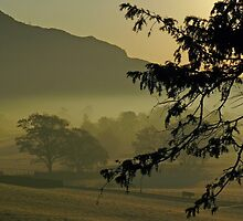 Autumn mist, Langdale valley. by Rebecca Mason