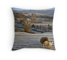 A frosty morning in Wharfedale Throw Pillow
