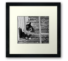 Alone and helpless Framed Print