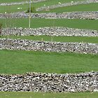 Nr. Linton, Yorkshire Dales by acespace