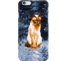 soaking up the sun iPhone Case/Skin