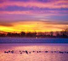 Lagerman Reservoir Sunrise 2 by Bo Insogna
