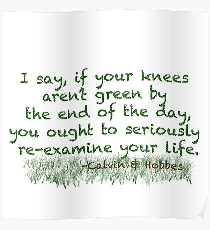Calvin & Hobbes Life Advice Poster