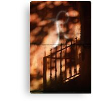 Railings shadows Canvas Print