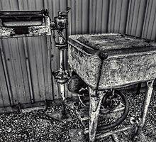 Dead Ringer by Steve Walser
