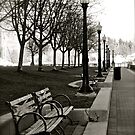 Waterfront Park by Rae Tucker