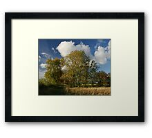 Witchity Ash Framed Print