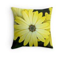 Daisy Delight Throw Pillow