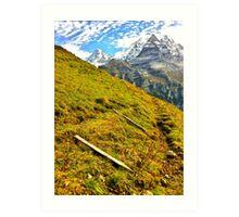 Cow fences down for the winter, Wengen Switzerland Art Print