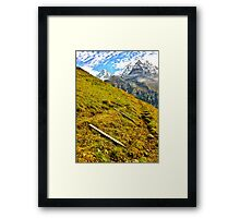 Cow fences down for the winter, Wengen Switzerland Framed Print