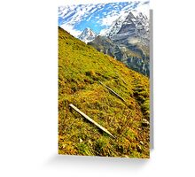 Cow fences down for the winter, Wengen Switzerland Greeting Card