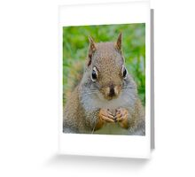 Can we be friends? Greeting Card