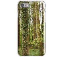 Forest, Stranorlar, Co. Donegal iPhone Case/Skin