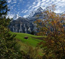 Swiss Fall Meadow below Eiger by David Galson