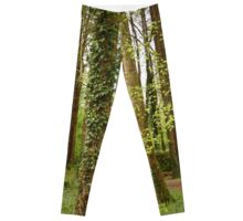 Forest, Stranorlar, Co. Donegal Leggings