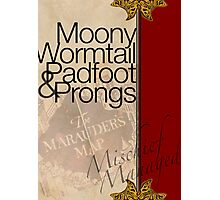 Moony, Wormtail, Padfoot, and Prongs Photographic Print