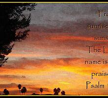 All Day Praise by Glenn McCarthy